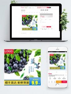 电商淘宝蓝莓水果生鲜主图直通车