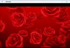 玫瑰花婚禮素材