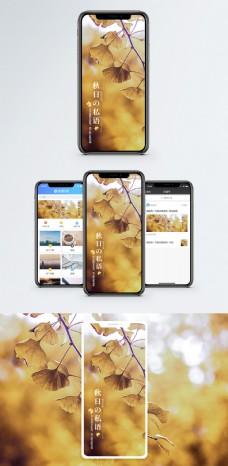 秋日手机海报配图