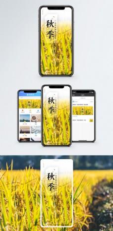 秋季秋日手机海报配图