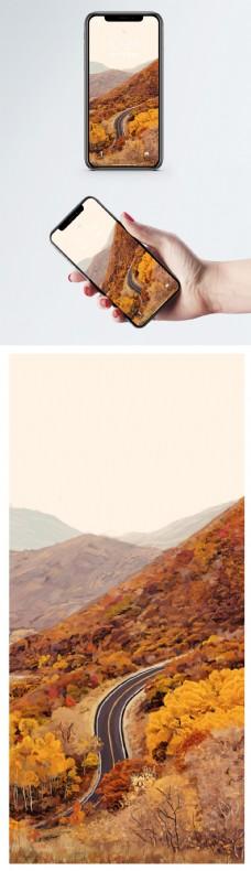 金秋公路手机壁纸