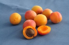 新疆蜜杏 蜜杏 杏 水果 金杏