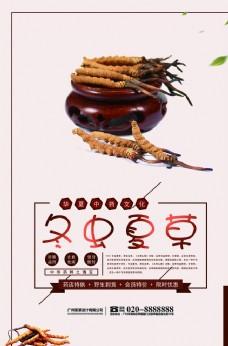 冬蟲夏草健康養生食材海報
