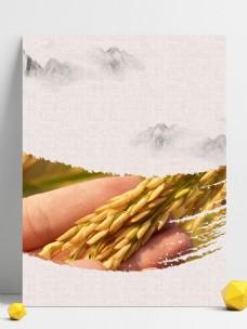 秋季水稻丰收背景素材