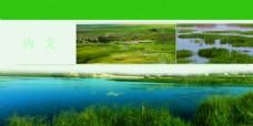 绿  背景  图片 大自然