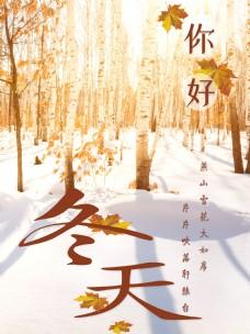 冬天海报设计景色
