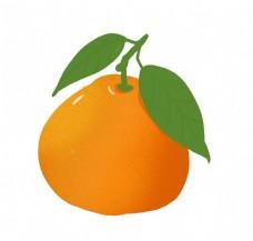 水果橙子橘子插画