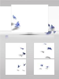 蓝色双飞蝶视频音效