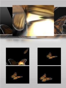 金黄色荧光蝴蝶视频音效