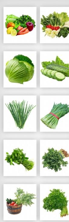 蔬菜实物设计元素