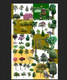 绿化景观素材