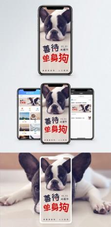 单身狗手机海报配图