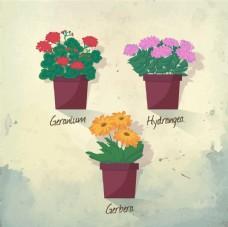 傳統的花盆
