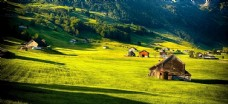 野外风光 草地 风景