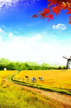 蓝天白云风景草地风车枫叶背景
