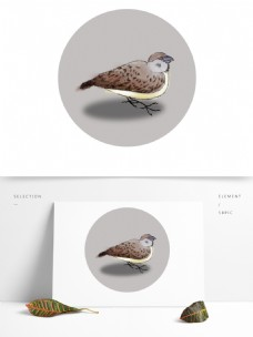 麻雀国画动物鸟类水墨画小鸟棕色免抠元素