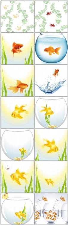 观赏鱼金鱼矢量设计素材