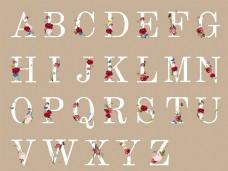 英文字母設計矢量