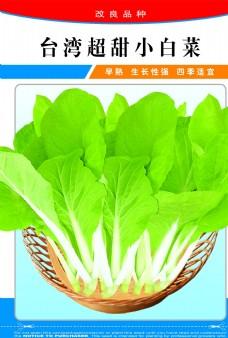 蔬菜水果 水果蔬菜 蔬菜海报