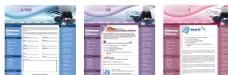 英文教育网站模板