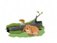 手绘兔子插画兔子木头香菇
