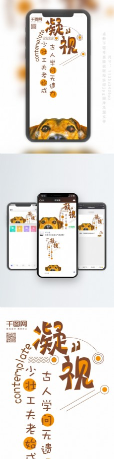 手机用图日签狗狗凝视