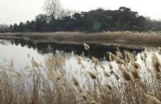 初冬圆明园
