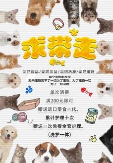 宠物店海报